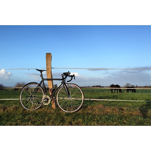 Preparing for #festive500 and enjoying the last sunbeams of the year! #auroracollective #thekidsallride #cyclingisnotacrime #auroraborealis #roadbike #campagnolo @campagnolosrl #chorus @ridededa #skrwt