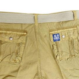 Shorts_back