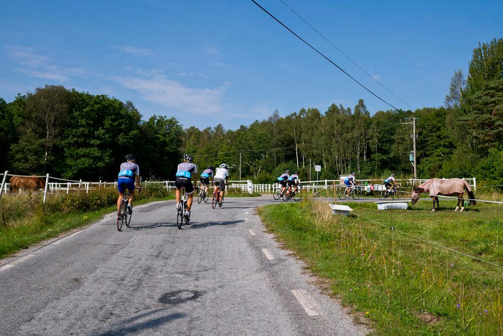 TdS Stage 6: Side roads