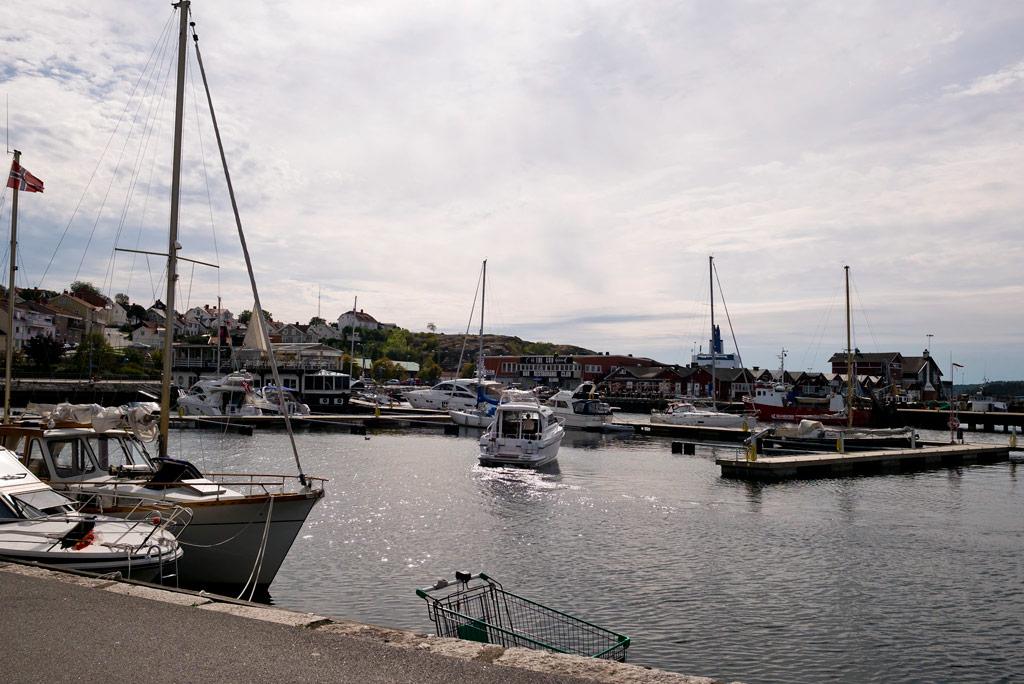 TdS Stage7: Harbor break